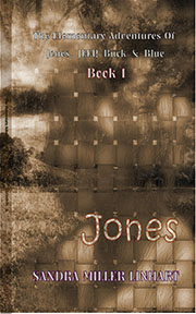 Elementary Adventures of JJBB Book 1 Cover